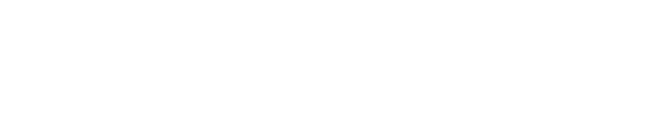 MAYORAL TRANSITION TEAM LOGO